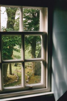 I'm a sucker for an old window with a view of trees :)