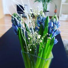 Vorvorvor-Frühling #spring #flower #hyazinthen #home