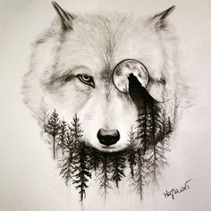 "4,553 curtidas, 90 comentários - Majla_art (@majla_art) no Instagram: ""Wolf Double Exposure !!! Pencil drawing! Do You like it?#wolf #doubleexposure #eye #animal #drawing…"""