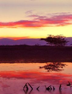 Sweet sunset colour by Neim Sejfuli ♦