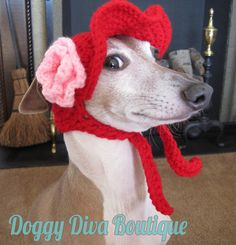 Dog Hat  Floppy hat Sunvisor for Dog or cat / by DoggyDivaBoutique, $22.00