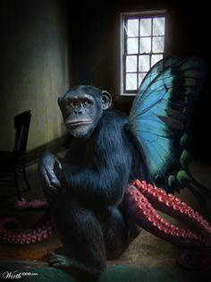 Portrait of a Montterpus - Worth1000 Contests