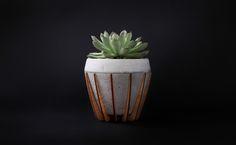 A Small Wood and Concrete Pot Called La Morena