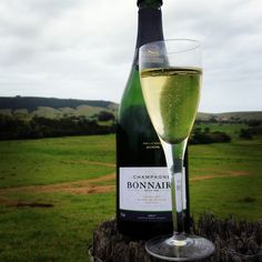 Champagne Bonnaire one of the best grower producers in all of France