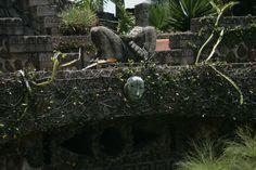 #montecoxala #jardin #view #nature #relax #hotel #spa #wellness #mexico #chapala #mexico www.facebook.com/monte.coxala... © Paulina Rosas   Photography & Desing www.facebook.com/...