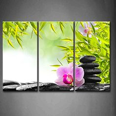 Spa Wall Art amazon - 3 panel wall art green spa concept bamboo grove and
