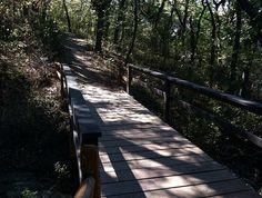 Hiking trails in Nebraska you must go on
