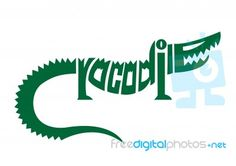 Crocodile alphabet logo Typography Drawing, Lettering, Word Drawings, Crocodile Logo, Illustrated Words, Fall Art Projects, Art Basics, Typographic Logo, Art Lessons Elementary