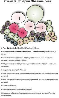 Схемы создания розариев. Обсуждение на LiveInternet - Российский Сервис Онлайн-Дневников