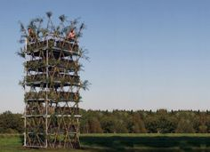 "University of Stuttgart in Germany have brought a new twist to the idea: the first tower made entirely out of living trees. The ""baubotanical"" building, which measures 9 meters high with a base area of 8 square meters, is made up of hundreds of White Willow plants, which will eventually fuse together to form a single, giant mega tree."