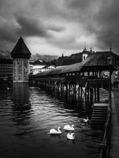 Lucerne pont historique Alter, Louvre, Building, Travel, Bridges, History, Lucerne, Viajes, Buildings