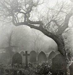 death tree Black and White dark dead cross goth gothic cemetery disturbing graveyard gravestone Dark Side, Old Cemeteries, Graveyards, Arte Obscura, Cemetery Art, Belle Photo, Dark Art, Mists, Scenery