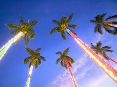 6 Christmas Trees!  #Aqua12staysofchristmas