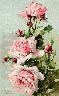 Pink Roses Vintage Clip Art Catherine Klein by TheOldDesignShop Art Floral, Watercolor Flowers, Watercolor Art, Painting Flowers, Clip Art Vintage, Catherine Klein, Vintage Rosen, Illustration Blume, Web Banner Design
