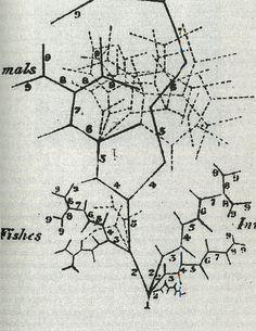 tree of animal development  barry - 1837