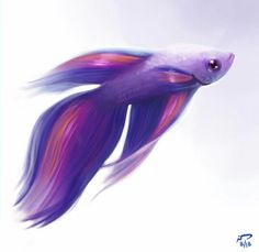 Magic Betta by Majoh on DeviantArt Betta Fish Tank, Beta Fish, Fish Drawings, Animal Drawings, Aquariums, Ocean Theme Tattoos, Watercolor Fish, Fantasy Paintings, Beautiful Fish