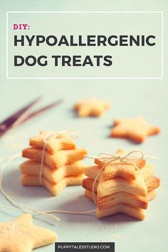 DIY Easy Hypoallergenic Dog Treats- for the sensitive dogs in your life. Puppy Treats, Diy Dog Treats, Homemade Dog Treats, Dog Treat Recipes, Healthy Dog Treats, Dog Food Recipes, Puppy Food, Homemade Recipe, Food Tips