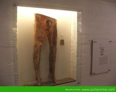 'Necropants' Made From Dead Human Skin On Display In Iceland Museum