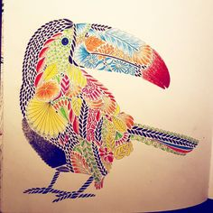 Toucan! #colouring #adultcoloring #adultcolouring #tropicalwonderland #toucan #milliemarottastropicalwonderland #milliemarotta #colourungbook #colour #color #relaxing #mindful #chill #chillout #tropical #pencils #derwent #derwentinktense #relaxation