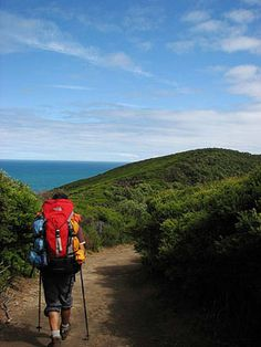 The Great Ocean Walk: Victoria's coastal hike Adventure Holiday, Adventure Travel, Travelocity Gnome, Travel Oz, Spring Break Trips, Walking Holiday, Travel Channel, Get Outdoors, Camping Activities