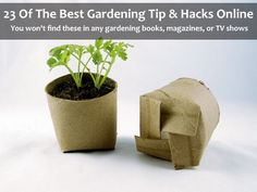 23 of the best gardening hacks, tips, and tricks you will find online. You won't find any of these gardening hacks on gardening shows and magazines...