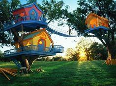 casas em árvores, casinhas coloridas