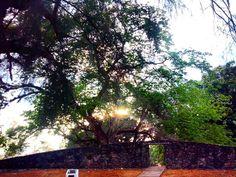 Siempre el sol puede salir... No importa que tan cargada esten las nubes  el sol buscara la manera de darte su brillo... #gf_pty #panama507 #pty507 #igerspty