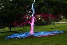 Long exposure picture of a Lightning Bolt hitting a Tree.Long exposure picture of a Lightning Bolt hitting a Tree. / it's amazing how something so destructive can be sooo beautiful All Nature, Science And Nature, Amazing Nature, Cool Pictures, Cool Photos, Random Pictures, Funny Pictures, Pictures Of Trees, Funny Images