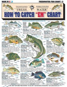 how to catch each fish chart