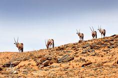 Namibia. Photos by T+S: Serra Cafema, Kaokoland | Luxury Hotels Travel+Style