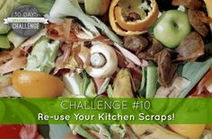 Greener Choices Blog Series: Re-use Your Kitchen Scraps!