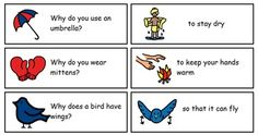32 Why Questions and Answers Cards with Visuals - 8 pages