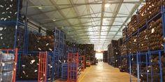 NejlevnejsiPNEU.cz - Letní osobní pneumatiky - TOMKET Basketball Court, Sports, Hs Sports, Sport