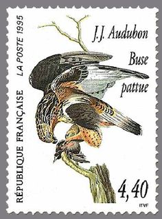 France Stamp 1995 World Birds, Birds Of America, John James Audubon, Bird Cards, Vintage Stamps, Big Bird, Mail Art, Stamp Collecting, Drawings