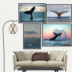 Whale Tail Sea Sunset Canvas Painting Poster Living Room Bedroom Home Decor Sunset Canvas, Tree Canvas, Whale Tail, Poster Pictures, Sea Waves, Paper Cards, Home Decor Wall Art, Living Room Bedroom, Poster Wall