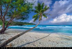 Seychelles beach seascape. Prints can be purchased at http://giovanni-allievi.artistwebsites.com/art/all/seascapes/all