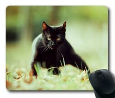 Picture of Black Cat Watching Rectangle Mouse Pad