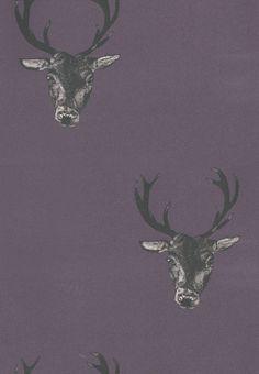 Stag Print Plum Wallpaper 29492
