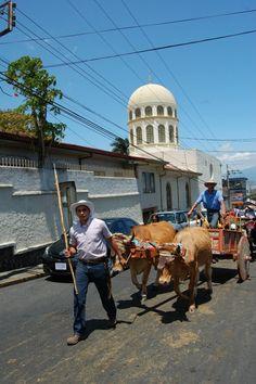 En Escazú. Costa Rica.