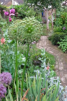 Make a long, thin town garden look bigger with a winding path.