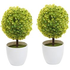 Set of 2 Artificial Faux Potted Tabletop Yellow Flower Pl... https://www.amazon.com/dp/B00TI0TRG6/ref=cm_sw_r_pi_dp_x_dzrRxbMJE2VDF