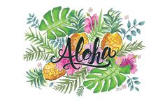 aloha_desktop.jpg (1856×1161)