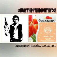 A #Wink & A #Smile is #flirtatious and just a little bit tart, like the nerf herder, Han Solo.  #maythe4thbewithyou #hansolo #scentsy #waxmaam