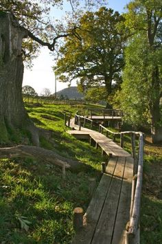 This boardwalk was build with Chestnut posts and hand rail and a Cedar deck in Herefordshire
