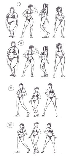 Female anatomy - different body shapes - drawing reference