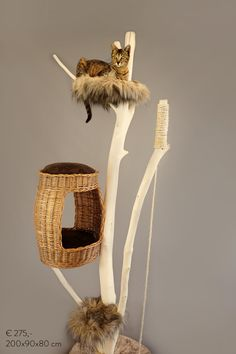 Catlounge cattree
