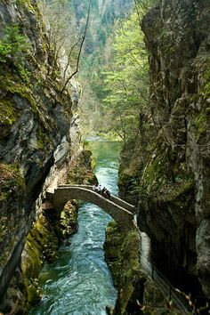 Would you rather be on the bridge or in the water at the Gorges de l'Areuse in Switzerland?