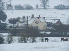 Ford Street Farm, Braughing, Hertfordshire