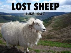 Rhondda Sheep, Blwch Mountain - by Griffin Guilding Parables Of Jesus, The Lost Sheep, Kids News, 100 Things To Do, My Father, Fathers, Christian Women, Family Kids, Great Britain