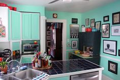 Susan's Colorful Cabinet of Curiosities